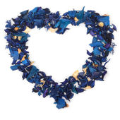 Heart of blue petals — Stock Photo