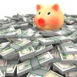 Pink piggy bank standing on a many dollars — Stock Photo