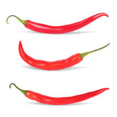 Set of Hot chilli pepper. Realistic Vector illustration. Isolat — Stock Vector