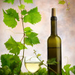 Stock Photo: Wine and grapevine