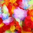 Colors of textile flowers - Stock Photo