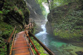 Canyon Vintgar, Triglav - Slovenia, — Stock Photo