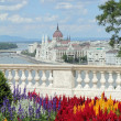 Idyllic view of Budapest — Stock Photo