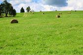 Idyllic rural views — Stock Photo