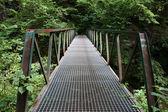 старый металлический пешеходный мост — Стоковое фото