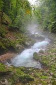 River in Canyon Vintgar - Slovenia, Triglav — Stock Photo