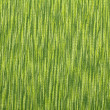 Stock Photo: Green linen texture of background