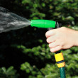 Watering the plants on garden — Stock Photo