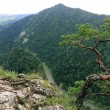 Stock Photo: Sokolica, Pieniny Mountains, National Park in Poland