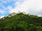 Ve a tres coronas, parque nacional de pieniny, polonia — Foto de Stock