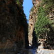 Samaria Gorge, Crete,Greece, — Stock Photo