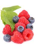 спелые ягоды малины и черники с листа — Стоковое фото