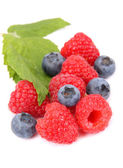 Ripe raspberry and Blueberries with leaf — Stock Photo
