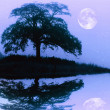 Tree silhouette and full moon with reflection over rippled water — Stock Photo
