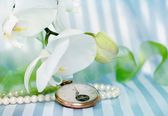 White orchid,pearls and golden swatch — Foto de Stock