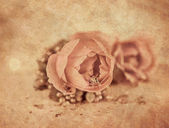 Romantic rose decoration on the table — Stock Photo