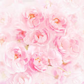 Roses bouquet on watercolor paper background — Stock Photo