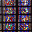 Stock Photo: Stained glass window in Notre dame cathedral
