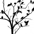 Doves on the tree,black and white photo,bird silhouette — Stock fotografie