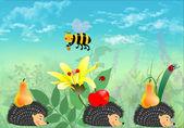 Hedgehogs,bee and ladybugs — Stock Photo