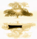 The old tree and the boat — Stock Photo