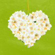 Flower heart with colorful background — 图库照片