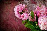 Rose bouquet — Stockfoto