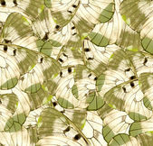 Alas de mariposa — Foto de Stock