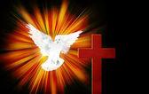 光の中で鳩クロス — ストック写真