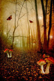 Red spotted mushrooms in a tale forest — Stock Photo