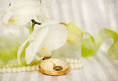 White orchid,pearls and golden swatch — Stock Photo