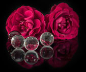 Red roses before with glass balls — 图库照片
