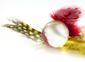 Красочные пятнистый перо с мрамором стекла — Стоковое фото