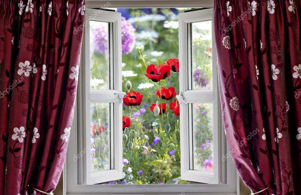 Guardando attraverso una finestra aperta sul giardino di fiori selvatici in estate foto stock - La finestra sul giardino ...