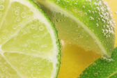 Lemon and lime slices in water — Stock Photo
