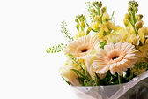 Bouquet of flowers on white background — Stock Photo
