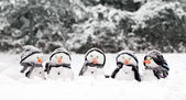 Little snowmen in a group — Stock Photo