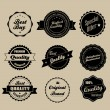 Retro vintage labels — Stock Vector #15456689
