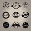 Vintage style badges — Stock Vector