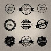 винтажном стиле значки — Cтоковый вектор