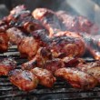 Barbecue Chicken Wings and Legs, closeup. — Stock Video