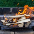 Burning Wood In The Fireplace — Stock Photo