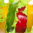 Mixed Bell Pepper with Lettuce — Stock Photo #12403469