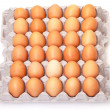 Fresh Brown Eggs in Carton — 图库照片