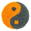 Orange and Black Lentil forming a yin yang symbol — Stock Photo