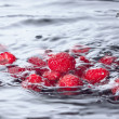 Red Raspberries Dropped into Water with Splash - Zdjęcie stockowe