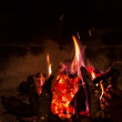 The firewood burning in the fireplace — Stock Video