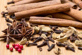 Dry multicolored spice closeup — Stock Photo