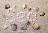 "Title ""Sea"" from shells with coral sand — Foto de Stock"