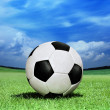 Soccer ball on green grass — Stok fotoğraf